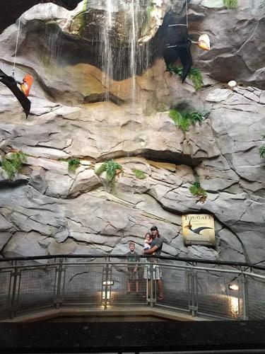 Waterfall at the NC Aquarium at Pine Knoll Shores