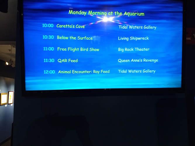 Show schedule for NC aquarium at Pine Knoll Shores